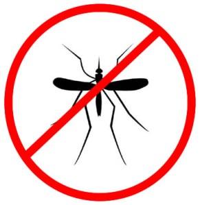 malaria-mosquito11